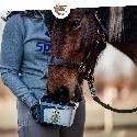 Friandises SPEED HORSE CARE